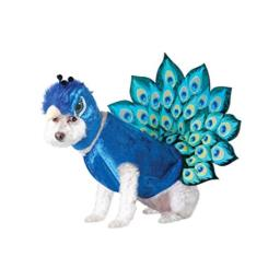 California Costumes Peacock Dog Costumes, Pet, Multi, Extra Small