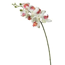 Vickerman FA172201 Real Touch Orchid-7 Heads Floral Stem, White