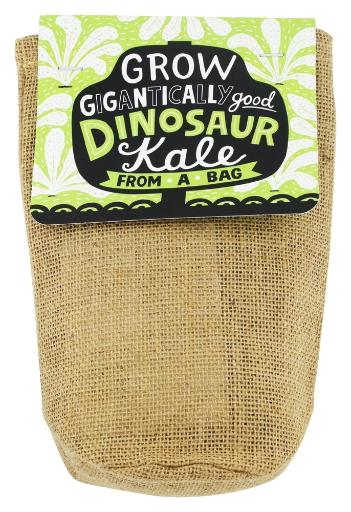 Noted - Grow Gigantically Good Dinosaur Kale Noted - Grow Gigantically Dinosaur Kale Get Noted Grow Gigantically Dinosaur Kale start growing massive plants from a natural jute bag. Once the plant is established, simply plant the whole bag in the garden and watch the plants grow! No uprooting seedlings as plant-based jute is biodegradable, dissolving into the garden soil, giving the roots room to grow and allowing the plant to fully mature. The kits come complete with seed starting growing mix, seeds and instructions. Each colorful jute bag is closed at the top with a hand lettered tag. They Are Noted Noted is a designer, manufacturer and distributor of merchandise for better gift, museum and toy shops. Curious and well-designed activities and kits that appeal to all ages. many of them make great gifts. Founded in 2004, Noted works with designers and manufacturers all over the world especially Japan, the source of a number of Noted's unique products. You'll find products at Luckyvitamin.com
