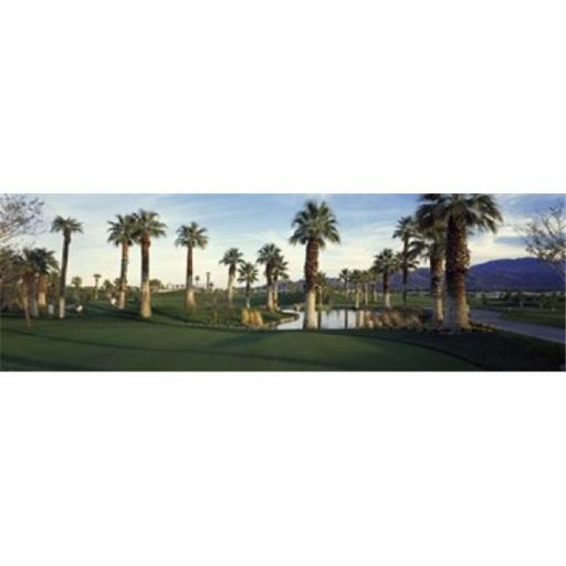 Palm trees in a golf course Desert Springs Golf Course Palm Springs Riverside County California USA Poster Print by - 36 x 12