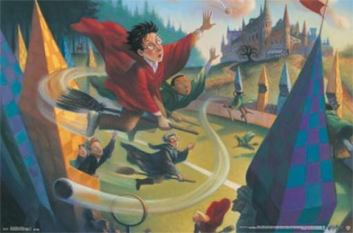 Harry Potter - Quidditch Poster Poster Print SI3CDE9ZFH3PMF1E