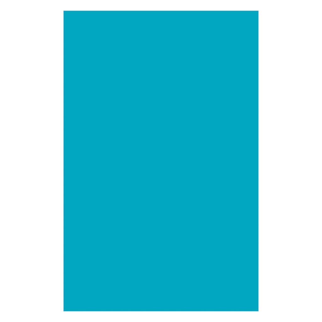 Pacon corporation 6 pk plastic art sheets 11x17 72750bn